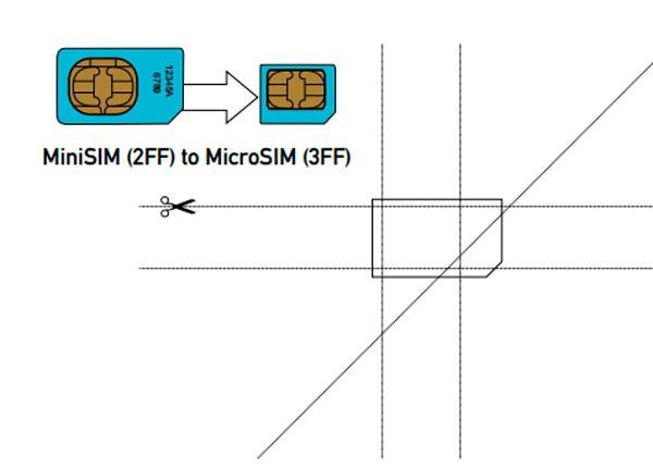 MiniSIM MicroSIM