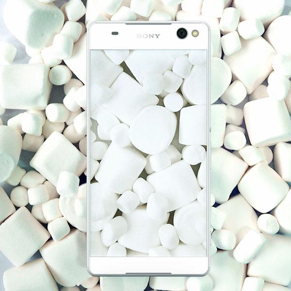 Sony beta marshmallow
