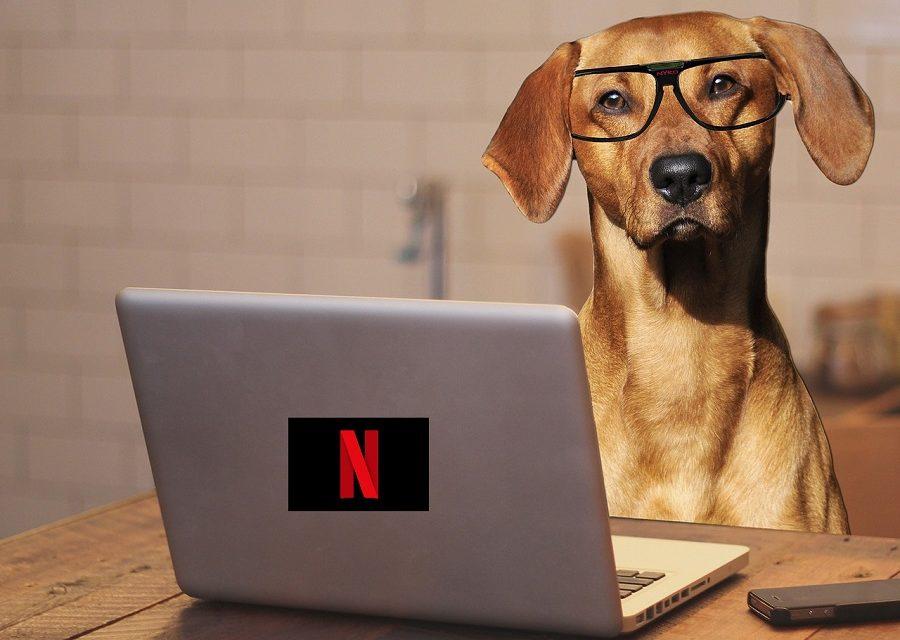 5 consejos interesantes al ver Netflix desde el PC