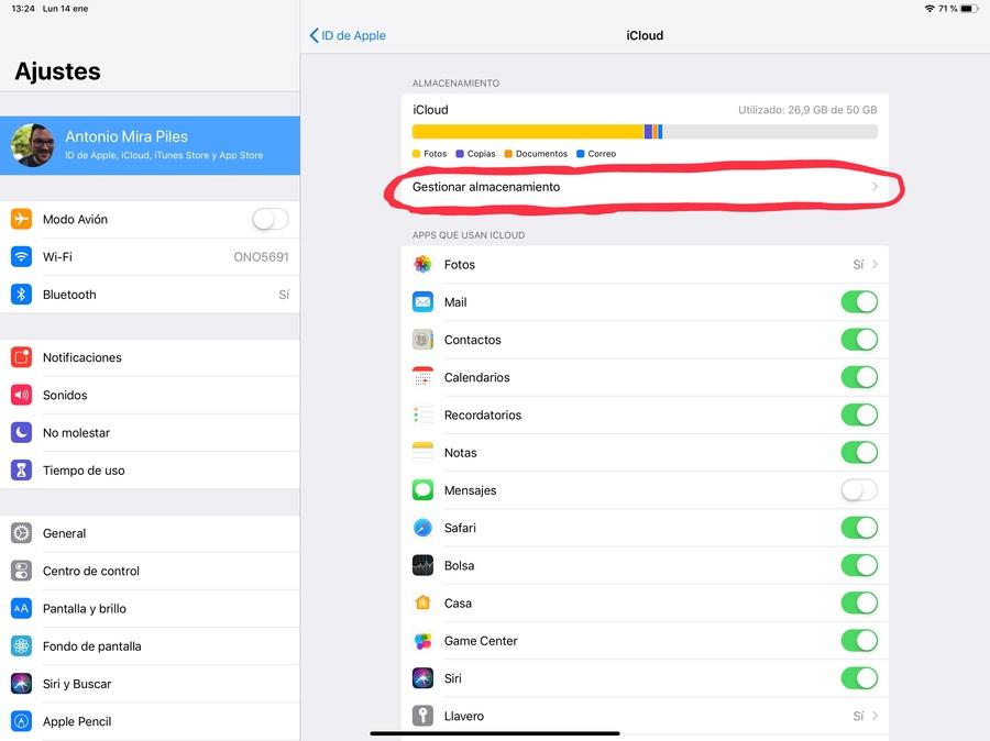 Cómo elegir datos iCloud gestionar