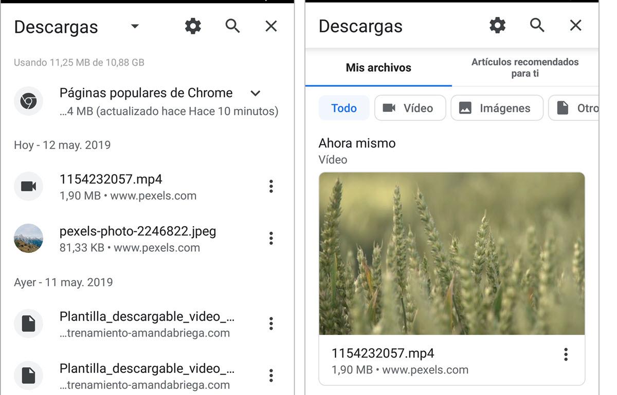Nueva página Descargas en Chrome