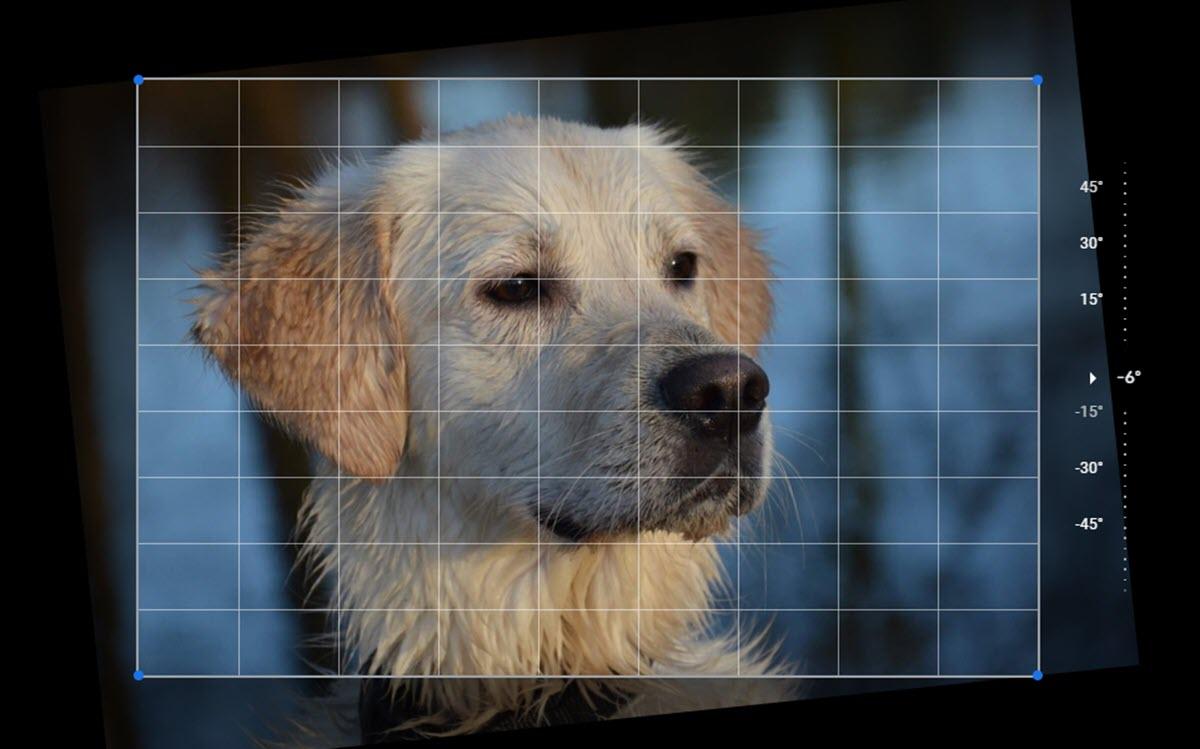 Cómo editar fotografías y aplicar filtros en Google Fotos