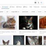 Cómo buscar imágenes sin derechos de autor en Google