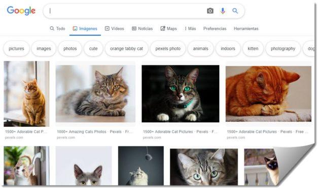 Cómo buscar imágenes por colores con Google Imágenes