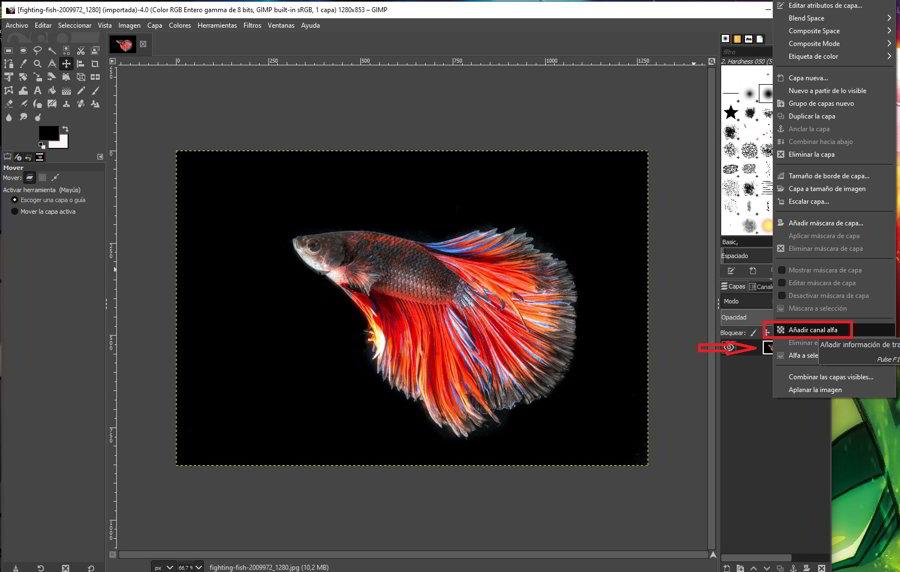 Como quitar el fondo a una imagen con GIMP 1
