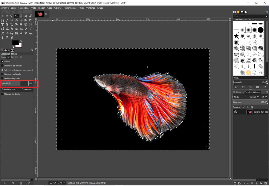 Como quitar el fondo a una imagen con GIMP 4