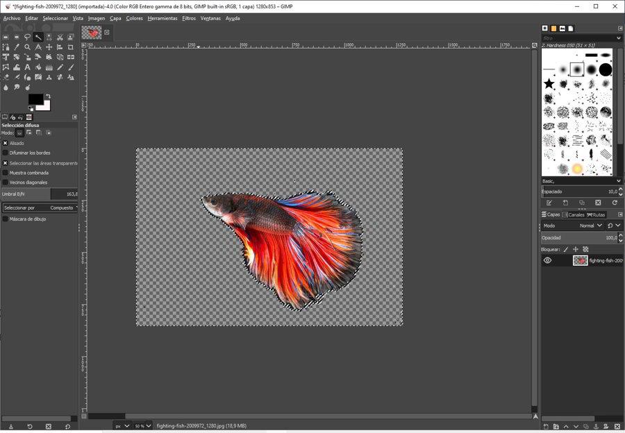 Como quitar el fondo a una imagen con GIMP 5