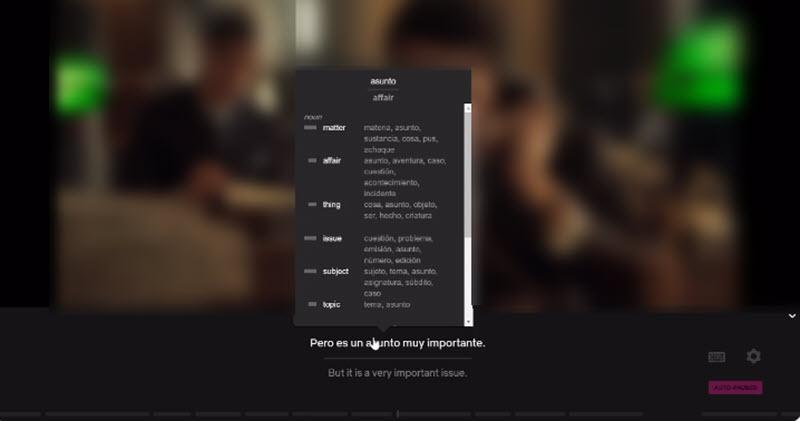 5 extensiones para aprender idiomas con Netflix 2